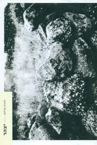 """עטיפת הספר בהוצאת """"עמדה חדשה"""" על הכריכה: חדוה שפרעם, רמת הגולן, 2006 עורך: עמוס אדלהייט"""