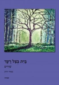 הציור על עטיפת הספר: משה דדון